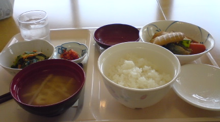 初めての昼食
